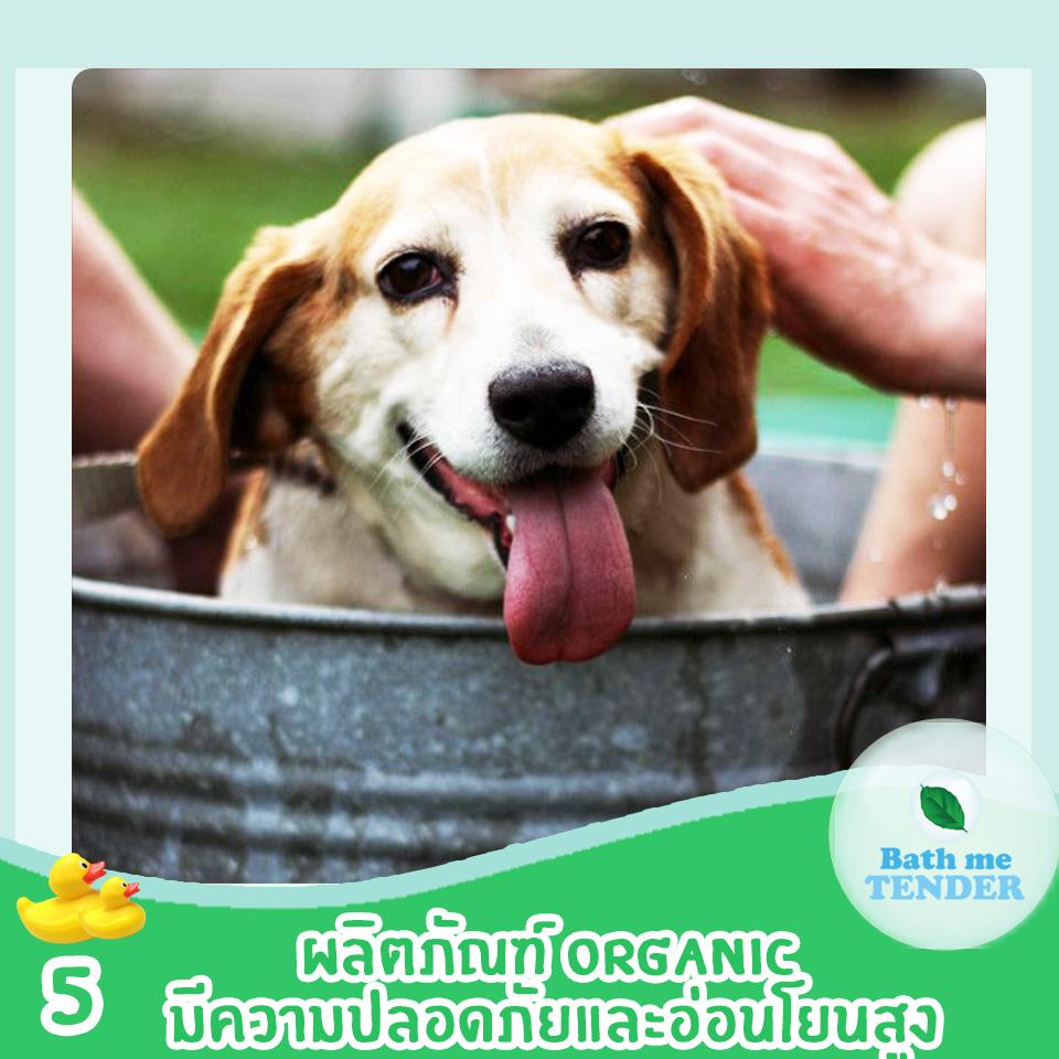 ผลิตภัณฑ์ออร์แกนิค ดีกับน้องหมาแมวอย่างไร Bath me Tender 6